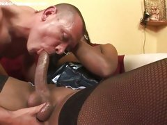 Shemale getting her big pecker sucked by stud