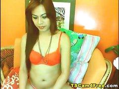 Webcam Hot Shemale In Lingerie